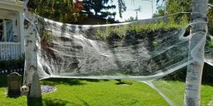 halloween-spider-web1.jpg